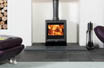 Woodburning stoves Exeter